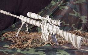 Картинка США, DPMS, американская автоматическая винтовка, Armalite, AR-10