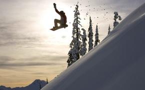 Картинка зима, солнце, снег, сноуборд, спуск, елки, экстрим