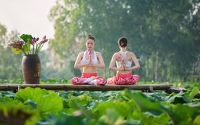 Обои лето, цветы, девушки, концентрация, гимнастика, йога, азиатки