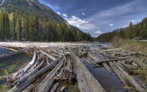 Картинка лес, горы, река, бревна