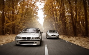 Картинка дорога, осень, лес, фары, скорость, BMW, E46, E39, Stance Works