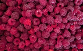 Обои лето, макро, малина, ягода