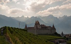 Картинка горы, Швейцария, Альпы, виноградник, Switzerland, Alps, Chateau d'Aigle, Замок Эгль, Aigle Castle