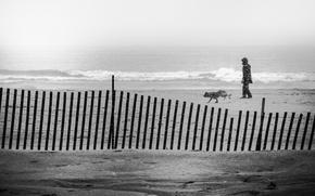 Картинка waves, storm, beach, ocean, seascape, dog, man, sand, seaside, foggy, cloudy, walker, snowing, snowstorm