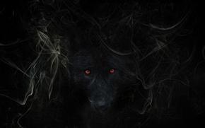 Картинка дым, волк, by hankep