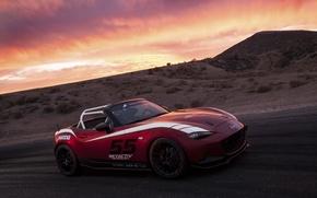 Картинка Mazda, Cup, MX-5