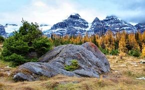 Картинка осень, небо, трава, облака, снег, деревья, горы, камень