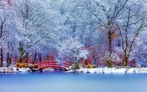 Картинка зима, снег, деревья, пейзаж, природа