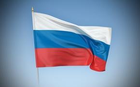 Обои белый, синий, красный, флаг, россия, триколор, russia