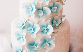 Картинка цветы, торт, украшение, свадьба, сладкое, Orchid, wedding, Cakes, Sweets