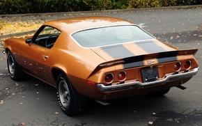 Картинка Z28, Мускул кар, фон, Muscle car, Camaro, вид сзади, Chevrolet, листья, купе, Камаро, оранжевый, 1971, ...