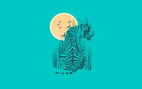 Картинка солнце, деревья, птицы, тигр