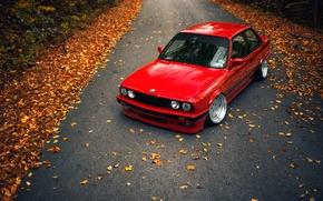 Картинка дорога, осень, листья, BMW, E30