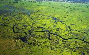 Картинка река, Бразилия, дельта, Мату-Гроссу, Национальный парк Пантанал