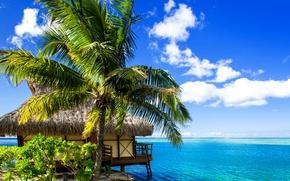 Обои тропики, бунгало, море, песок, берег, Bora-Bora, Французская Полинезия, пальмы