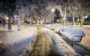 Обои Болгария, скамья, парк, Kazanlak, зима