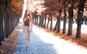 Обои Girl in the park, девушка, аллея, улыбка, походка, Архангельское