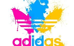 Обои спорт, краски, эмблема, adidas