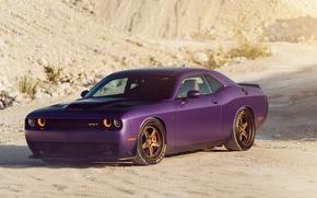 Картинка Dodge, Challenger, Hellcat, Track, Function, ADV5
