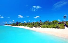 Обои песок, море, пляж, небо, пальма, Мальдивы, бунгало