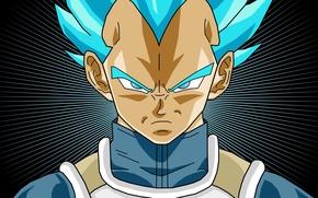 Картинка game, fighter, anime, man, face, transformation, evil, asian, martial artist, armour, warrior, manga, king, japanese, …