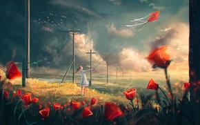 Обои поле, столбы, облака, цветы, воздушный
