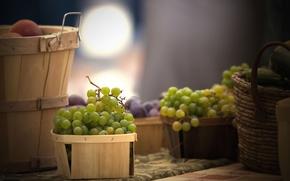 Картинка корзина, еда, виноград