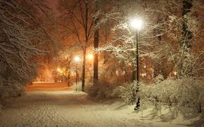 Картинка дорога, пейзаж, ночь, природа, lights, огни, фонари, фонарь, аллея, road, landscape, nature, night, полночь, lamp, ...