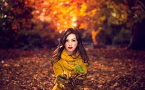Картинка листья, девушка, природа, боке, портрет осенний