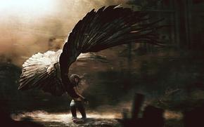 Обои ангел, девушка, крылья
