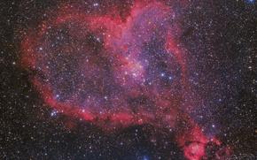 Обои Сердце, Heart, в созвездии Кассиопея, эмиссионная туманность