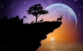 Картинка море, небо, звезды, закат, скала, дерево, планета, олень, силуэт