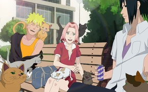 Картинка girl, game, Sasuke, Naruto, Sakura, neko, anime, cat, boy, ninja, asian, Uchiha, manga, Uzumaki, hokage, …