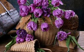 Обои корзина, цветы, тюльпаны