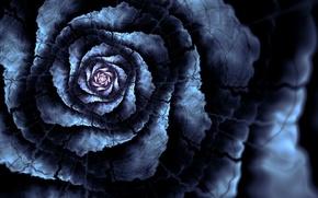 Картинка цветок, линии, трещины, лепестки, арт