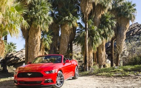 Картинка 2014, Convertible, форд, мустанг, Mustang, Ford