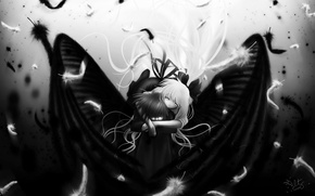 Обои white, black, wings