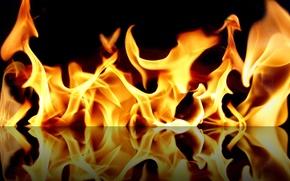 Обои пламя, fire, отражение, огонь