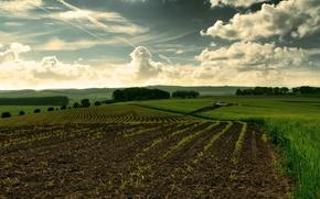 Обои небо, поле, природа