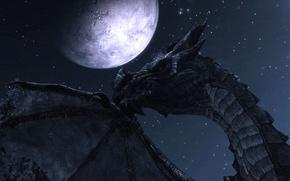 Картинка дракон, луна, ночь, The Elder Scrolls V Skyrim, скайрим