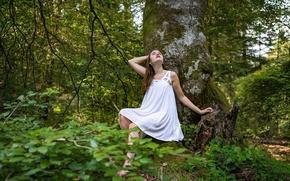 Картинка лес, девушка, дерево