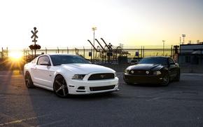 Картинка белый, закат, чёрный, mustang, мустанг, ограждение, white, ford, black, форд, sunset