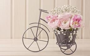 Обои цветы, лепестки, натюрморт