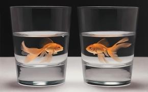 Картинка вода, стакан, рисунок, рыбка, арт, тет-а-тет