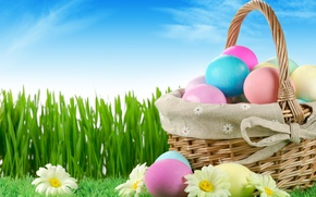 Картинка grass, sky, nature, flowers, Easter, eggs, holiday