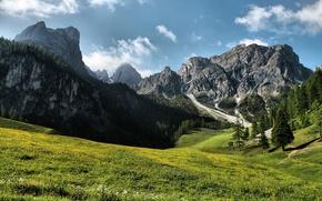 Картинка небо, трава, деревья, горы, природа, холмы, пейзажи, красота