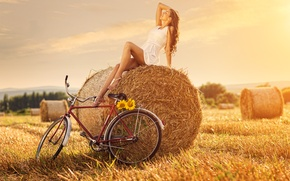 Картинка поле, девушка, велосипед, подсолнух, стог сена
