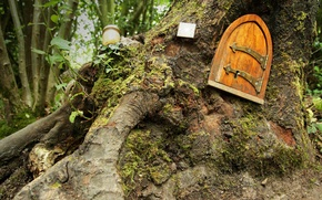 Картинка лес, Англия, сказка, дверь, Винни-Пух, домик, Восточный Сассекс, Ashdown Forest