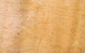 Картинка wood, natural, pattern, no Polish, Brown clear