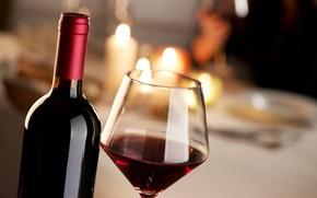 Обои wine, bottle, alcoholic beverage, liquid, glass of wine